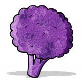 Purple sprouting brocolli cartoon — Stock Vector
