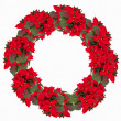Christmas wreath from poinsettia isolated on white — Stock Photo #58954731