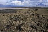 Lake Natron and the Ol Donyo lengai volcano. — Stock Photo