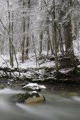 горный поток — Стоковое фото