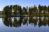 Lake with reflection — Stock Photo