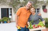 Mature Couple With Organic Vegetables — Stock Photo