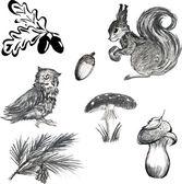 Set of forest inhabitants — Stock Vector
