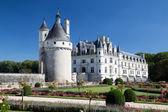 Chateau de Chenonceau, France — Stock fotografie