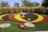 Flower Clock in the public park, geneva, Switzerland — Foto Stock