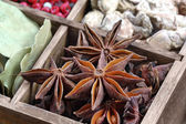 Anis spice in the wooden box — Foto de Stock