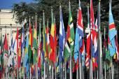 International flags at the United Nation, Geneva, Switzerland — Stock Photo