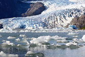 Mendenhall Glacier in Alaska, USA — Stock Photo