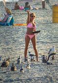Bikini voeding — Stockfoto