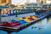 Pedal Boars Inner Harbor — Stock Photo