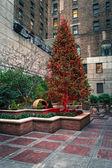 Red City Tree — Stock Photo