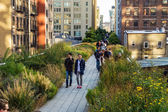 Along the High Line — Stock Photo