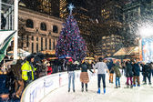 Skating by the Tree — Stock Photo