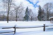 Snowscape — Stock Photo
