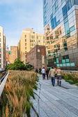 Plants Along the Highline — Stock Photo
