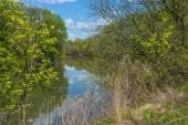 Darby Creek — 图库照片