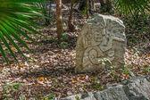 マヤの石 — ストック写真
