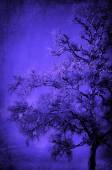Tree pattern in blue — Foto Stock
