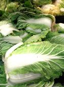 White cabbage — Stock Photo