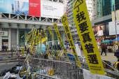 Hong Kong democracy protesters are fighting off their chief exec — Foto de Stock