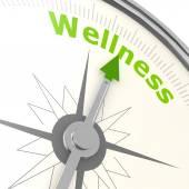 Wellness compass — Stock Photo