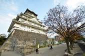 Tourists visit Osaka castle in Osaka city, Japan — Stock Photo