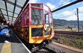 Tourist take photo of the train at Kameoka Torokko Station — Stock Photo