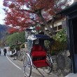 Постер, плакат: A Jinrikisha parks under maple tree in Arashiyama