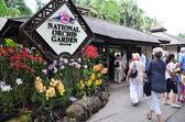 Singapur botanik bahçeleri ile insanlar yürümek — Stok fotoğraf