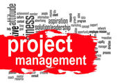 Project management word cloud with red banner — Stock Photo