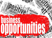 Word cloud business opportunities — Stock Photo