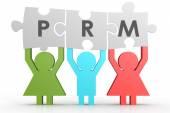 Prm - Partner Relationship Management quebra-cabeça em uma linha — Fotografia Stock