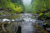 Wilderness Creek — Stock Photo