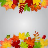 Colorful autumn leaves on gray background — Stock Vector