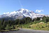 Mt. Rainier national park — Stock Photo