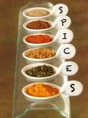 Indian spices — Stock fotografie