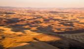 Rolling Hills Palouse Region Washington State Farmland Rich Agriculture — Stock Photo