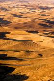 Rolling Hills Palouse Region Eastern Washington State Farmland — Stock Photo