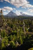 McKenzie Pass Lava Fields Three Sisters Little Brother Mountains — Stock Photo