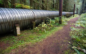 Large Pipeline Industrial Pipe Indistry Construction Viaduct — Stock Photo