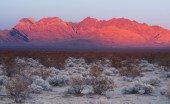 Providence Mountains Edgar & Fountain Peak Mojave Desert — Stock Photo