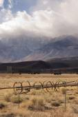 Owen's Vally Sierra Nevada Mountains Livestock Cattle Ranch — Foto Stock