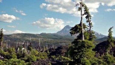 Drive Along McKenzie Pass Three Sisters Cascade Range Ancient Lava Field — Stock Video