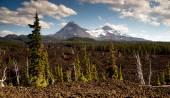 Mckenzie Pass Three Sisters Cascade Mountain Range Lava Field — Stock Photo