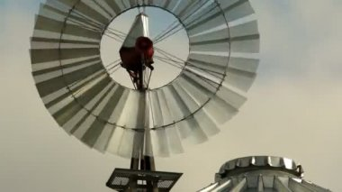 Windmill Spins Fast Above Farm Silo Pumping Water — Stock Video