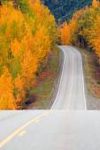 Fall Color Autumn Landscape Alaska Two Lane Road Highway — Stock Photo
