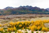 Kennicott Sediment Glacier Wrangell St Elias Mountains Autumn Co — Stock Photo