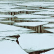 Ice floes on river — Stock Photo #67491559