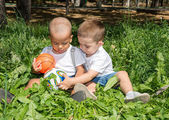 Little boys with soccer ball in park — Stock Photo