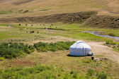 Kazakh yurt in Assy plateau in Tien-Shan mountain — Stock Photo